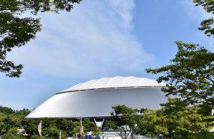 Draft History for Saitama Seibu Lions (西武 歴代ドラフト)
