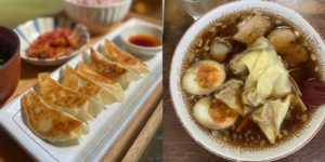 Are Gyoza Wrappers the Same As Wonton Wrappers?